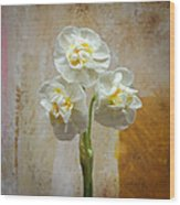 Bridal Crown Narcissus Square Wood Print