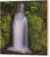Bridal Dress. Waterfall At Benmore Botanical Garden. Nature Of Scotland Wood Print