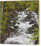 Bridal Veil Creek Wood Print