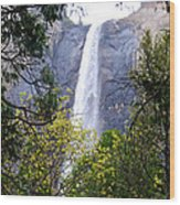 Bridal Veil Falls In Yosemite Valley In Spring- 2013 Wood Print
