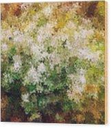 Bridal's Wreath Wood Print by Brenda Bryant