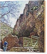Bridge Across The Whitewater River On Whitewater Catwalk National Recreation Trail Near Glenwood-new Wood Print
