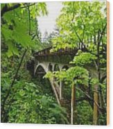 Bridge And Lush Vegetation Wood Print