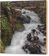 Lower Wahkeena Falls Wood Print