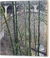 Bridge Arch Through The Trees Wood Print
