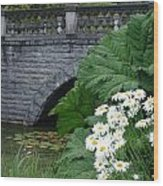 Stone Bridge Daisies Wood Print