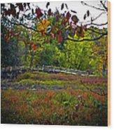 Bridge In Massachusetts Park Wood Print