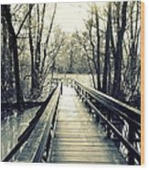 Bridge In The Wood Wood Print