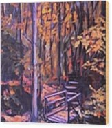Bridge In Woods Near Pandapas Wood Print