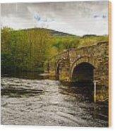 Bridge Near Cymer Abbey Wood Print