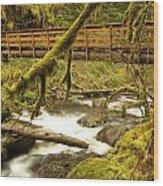 Bridge Over Paradise Wood Print