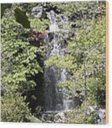 Bridge Over The Falls Wood Print