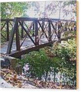 Bridge The Gap Wood Print