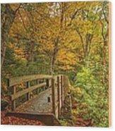 Bridge To Eden Wood Print