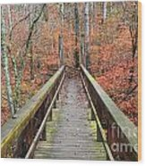Bridge To Fall Wood Print