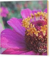 Bridgets Bloom Wood Print
