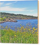Brier Island In Digby Neck-ns Wood Print