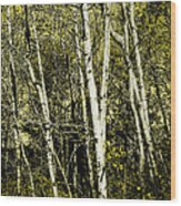 Briers And Brambles Wood Print