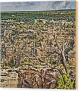 Bright Angel And El Tovar Hotel South Rim Wood Print
