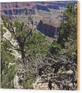 Bright Angel Point View Wood Print