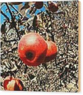 Bright Apples Wood Print