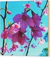 Bright Blossoms Wood Print