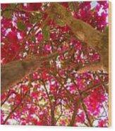 Bright Bougainvillea Wood Print