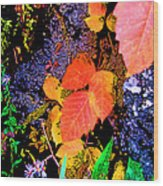 Bright Colorful Leaves Vertical Wood Print