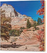 Bright Fall Colors At Zion Wood Print