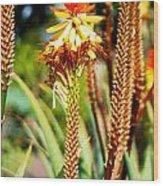Bright Flower 1 Wood Print