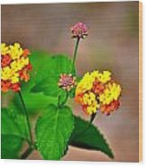 Bright Flowers Wood Print