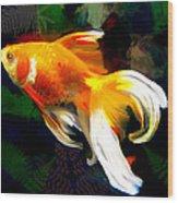 Bright Golden Fish In Dark Pond Wood Print