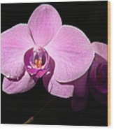 Bright Orchid Wood Print