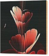 Bright Red Wood Print