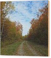Bright Trail Wood Print