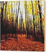 Bright Woods Wood Print