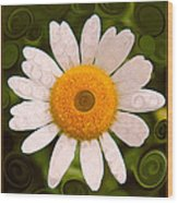 Bright Yellow And White Daisy Flower Abstract Wood Print
