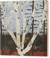 Brightest Birch Wood Print