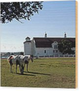Brighton Barn And Horses Wood Print