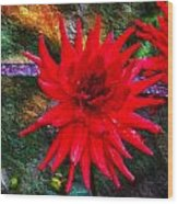 Brilliance In An Autumn Garden - Red Dahlia Wood Print