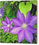 Brilliant Blue Clematis Wood Print