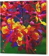 Brilliant Bouquet Wood Print