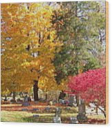 Brilliant Colors In The Cemetery  Wood Print