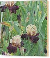 Brilliant Disguise Iris Wood Print