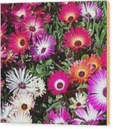 Brilliant Flowers Wood Print