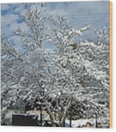 Brilliant Snow Coated Tree Wood Print