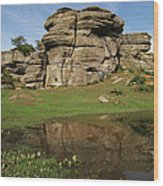Brimham Rocks Reflection Wood Print