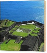 Brimstone Fortress St Kitts Wood Print