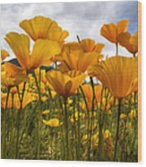 Bring On The Poppies Wood Print
