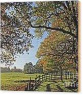 British Autumn Wood Print